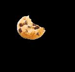 Morceau de biscuit